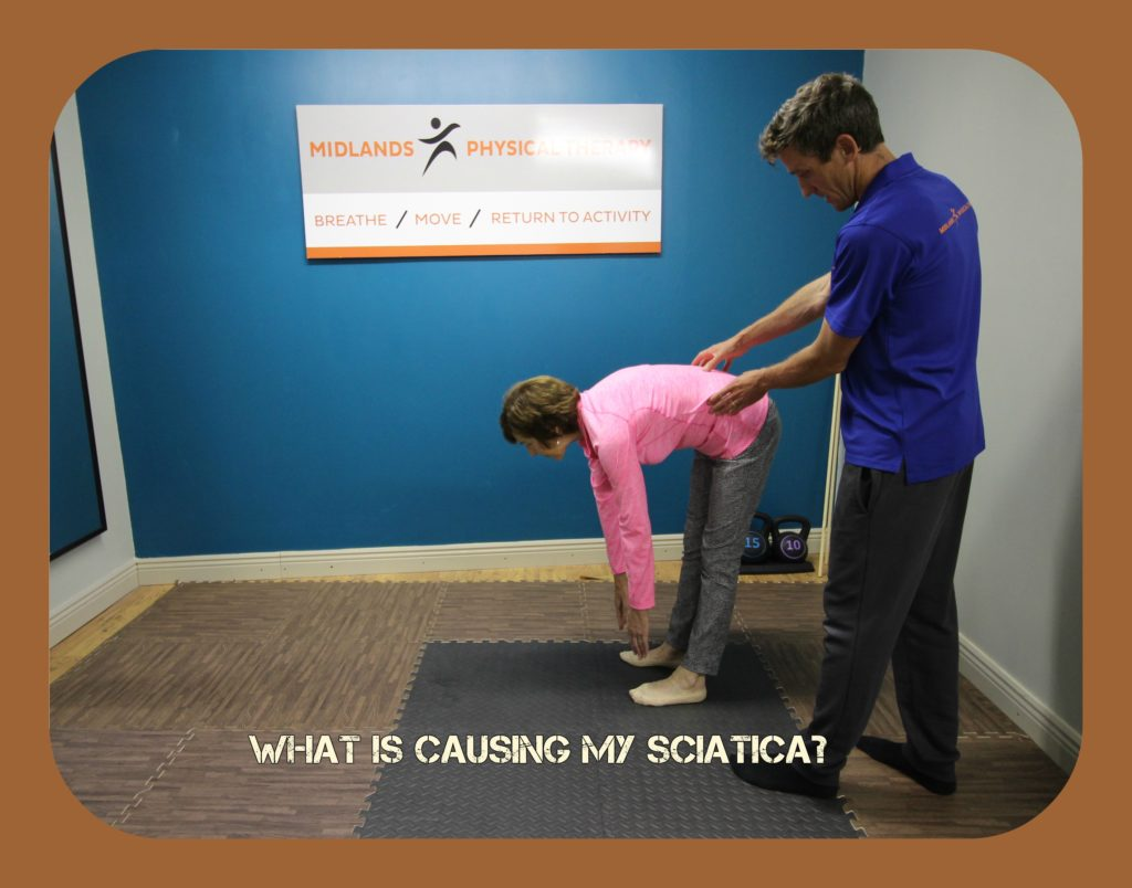 What is causing my sciatica