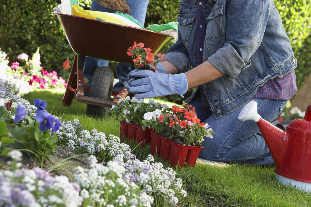 Female patient gardening after physiotherapy